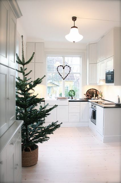 a non-decorated tree in a basket is ideal for a spacious minimalist kitchen