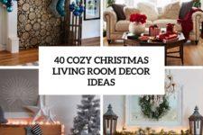 40 cozy living room decor ideas cover