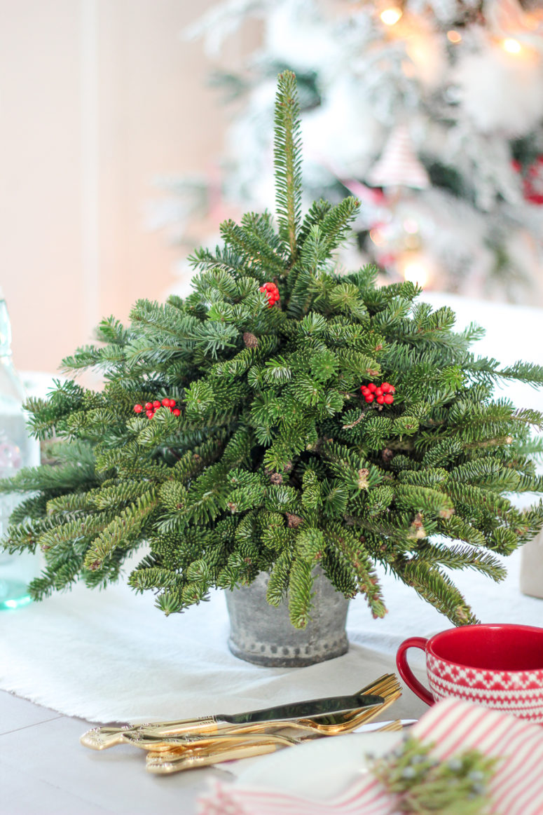 DIY tabletop Christmas tree from free fir clippings (via www.craftberrybush.com)