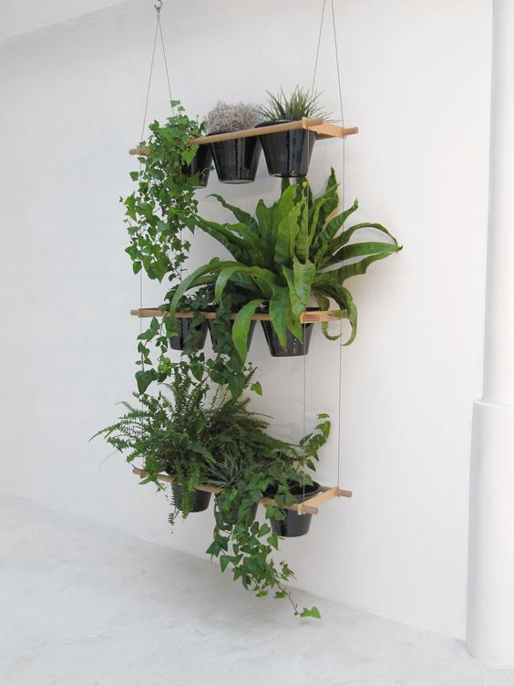 airy hanger with wooden holders