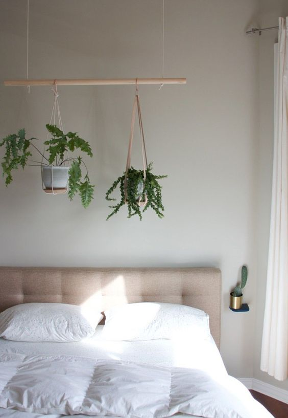 hanging plants display to add greenery to a small bedroom