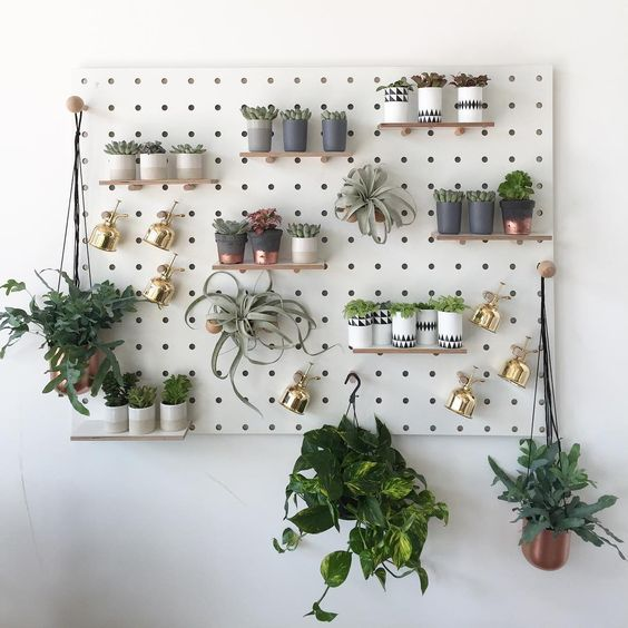 a pegboard can accomodate a lot of planters in different ways