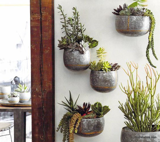curvy wall planters are made from heavy galvanized iron sheet