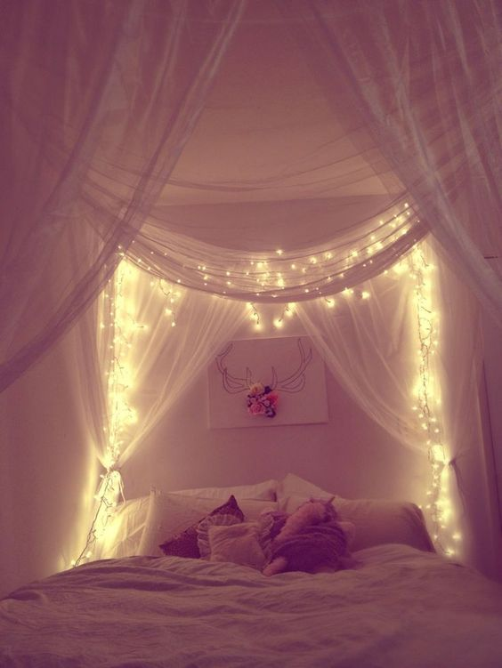 string lights in the canopy