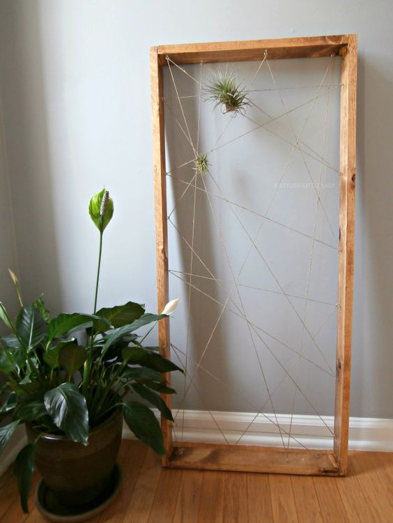 wooden frame with a twine web for display