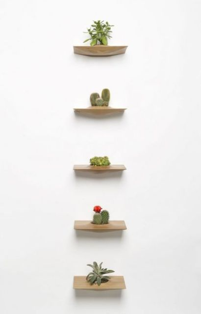 wooden planters for small plants can be attached to the wall