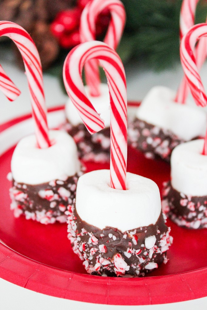 DIY peppermint and chocolate covered marshmallows (via www.bakingbeauty.net)