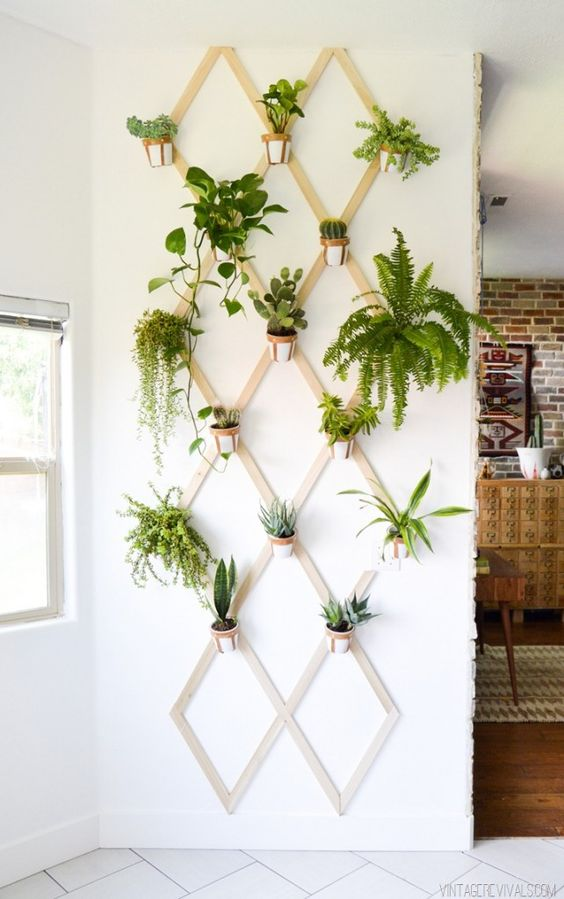 wooden planks with pot holders