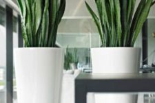 15 simple white large floor vases with succulents