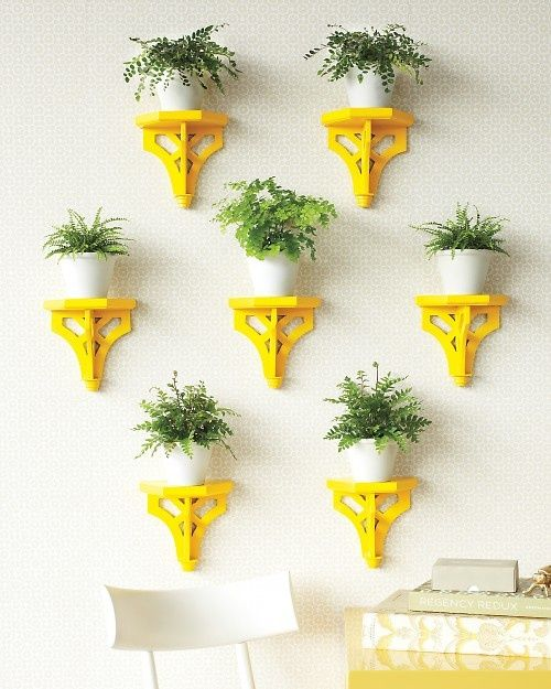 vibrant yellow plant stands