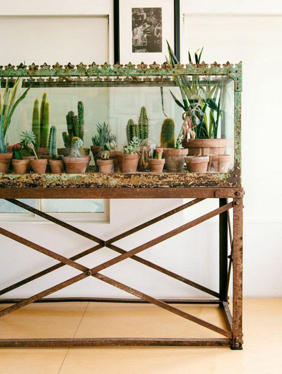 a patina terrarium used for displaying house plants