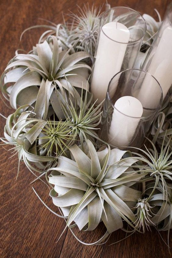 air plant wreath and candles inside