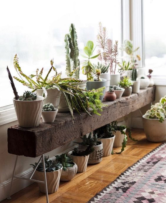 dark stained wooden beam bench as a plant stand