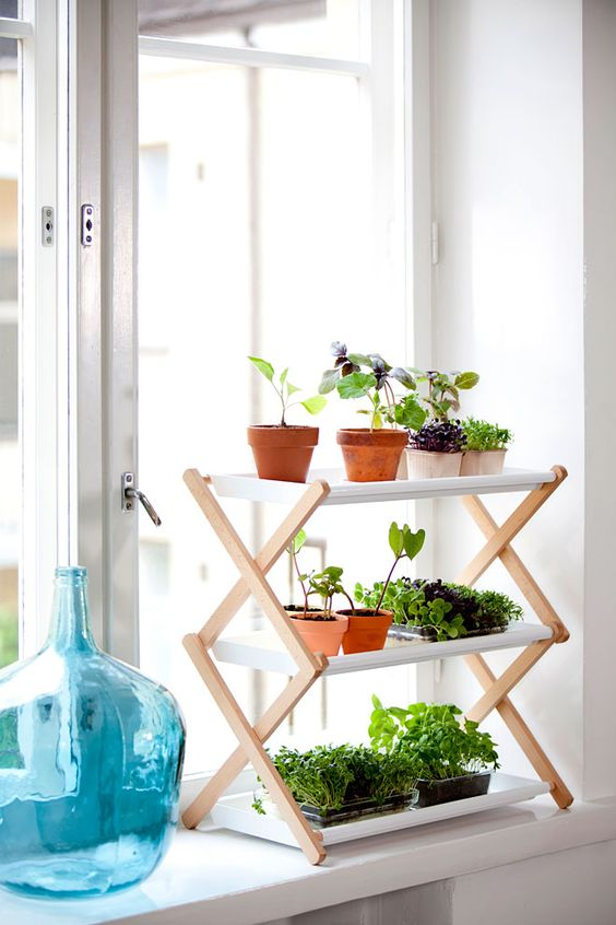 indoor shelf with several tiers will hang more planters
