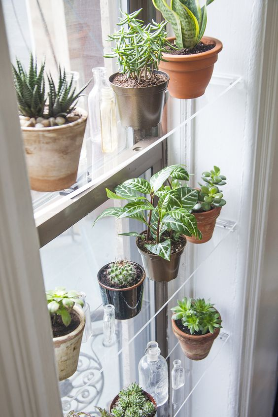 lucite window shelves don't prevent light from coming into the space