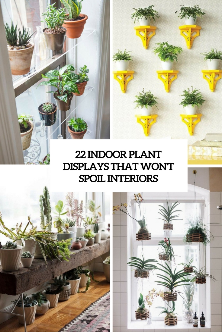 indoor plant displays that won't spoil interiors cover