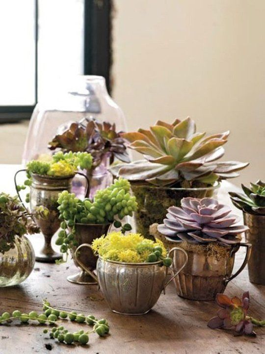 vintage silver, brass or copper pieces as planters