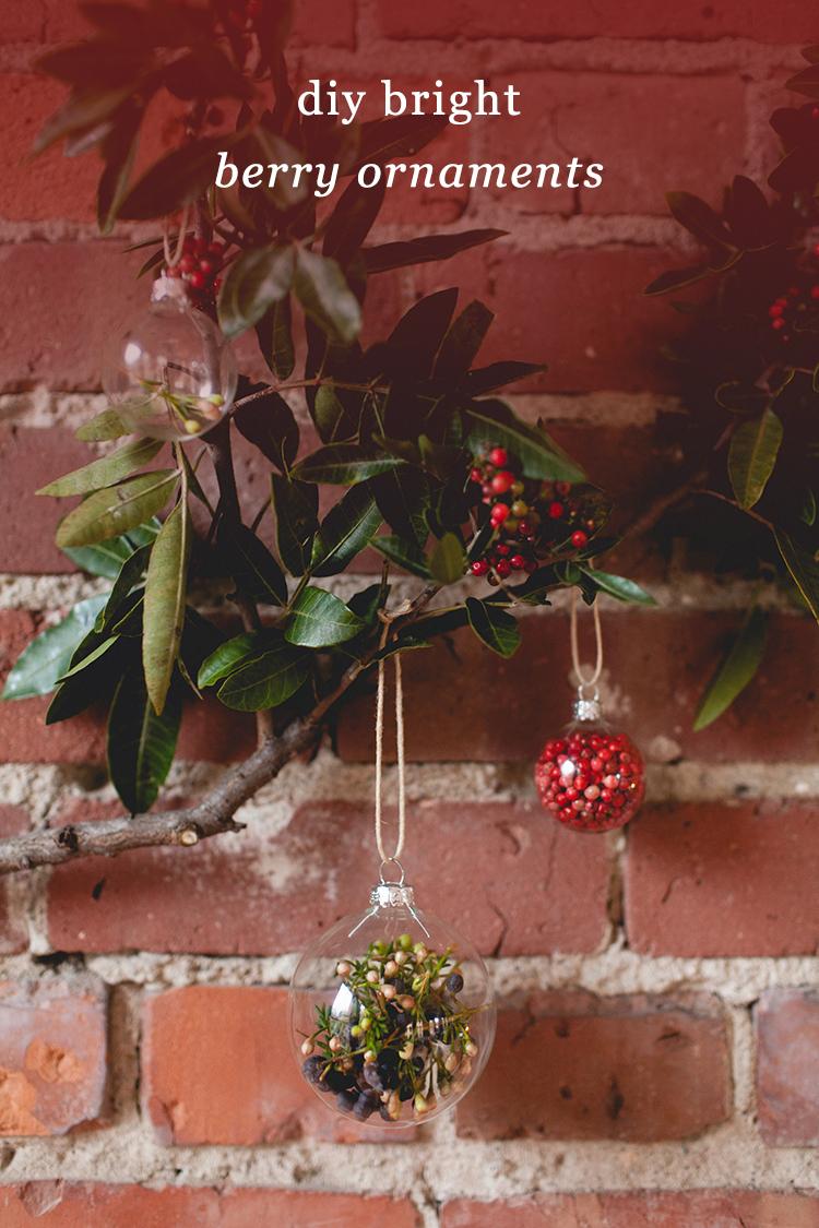 DIY transparent glass ornaments filled with moss and berries (via jojotastic.com)
