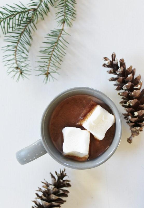DIY homemade hot chocolate mix (via www.adventuregathereat.com)