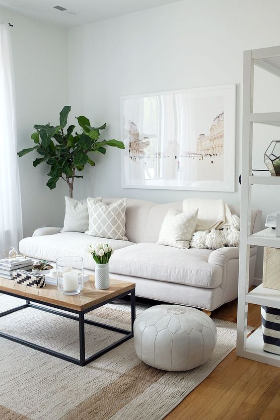 neutral colors and a medium-sized sofa make the space look bigger