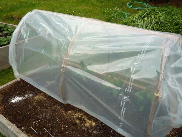 11 cool diy greenhouses with plans and tutorials shelterness for Homemade greenhouse plastic