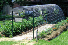 DIY arched trellis and hoop house