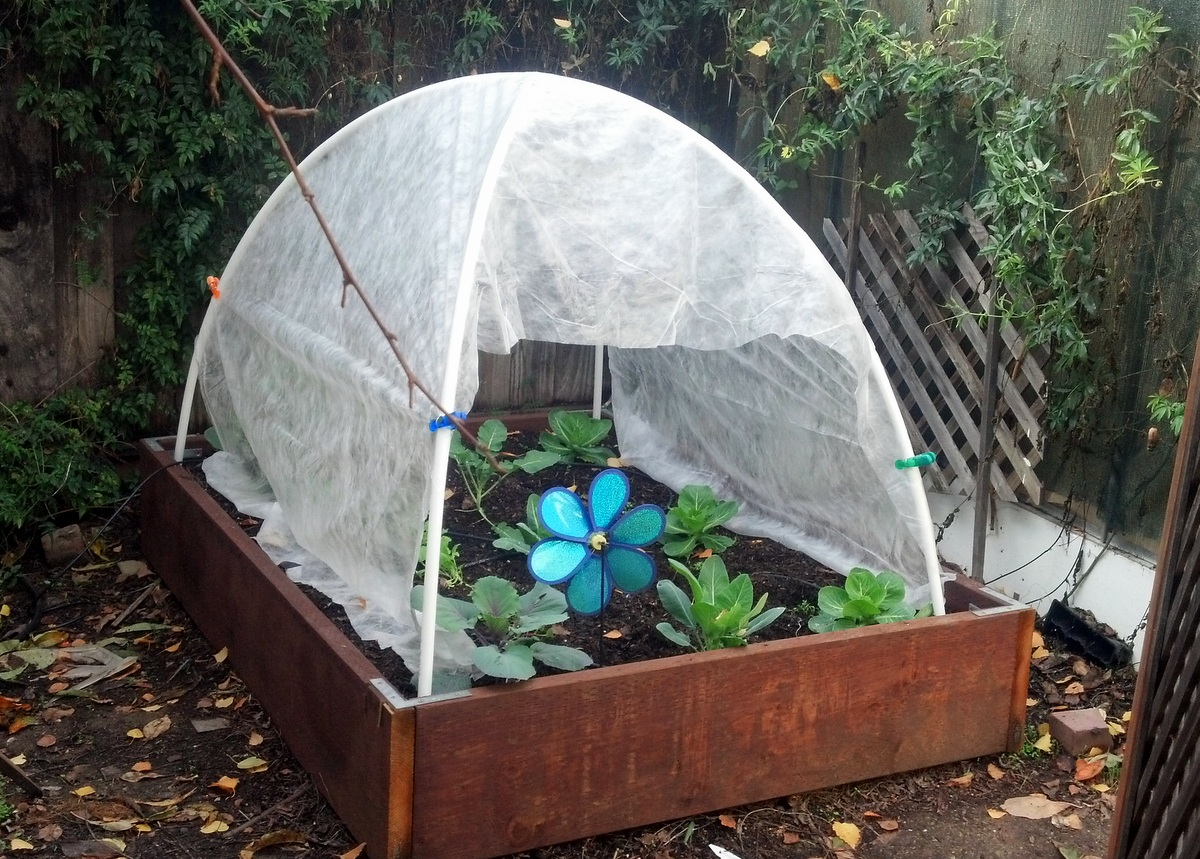 DIY cheap hoop house with a tent