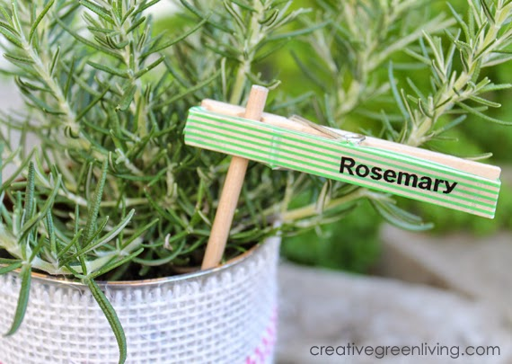 DIY plant markers of clothespins (via www.creativegreenliving.com)