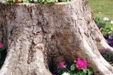 02 a tree stump may be turned into a cool flower bed