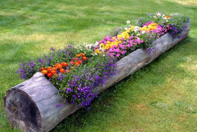 a hollowed log raised flower bed is a super cool idea - Pictures Of Flower Bed Ideas