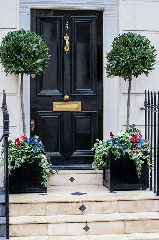 bay tree topiaries with flower underplantings give this front door a chic look