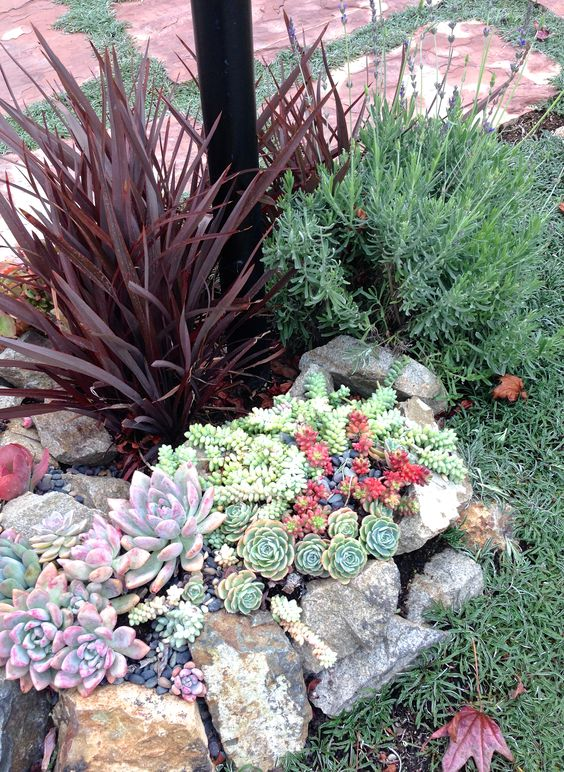 20 beautiful rock garden design ideas shelterness for Garden design using succulents