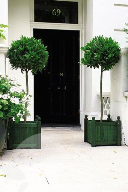 a refined black door and bay trees in green pallet wood planters for a contrast