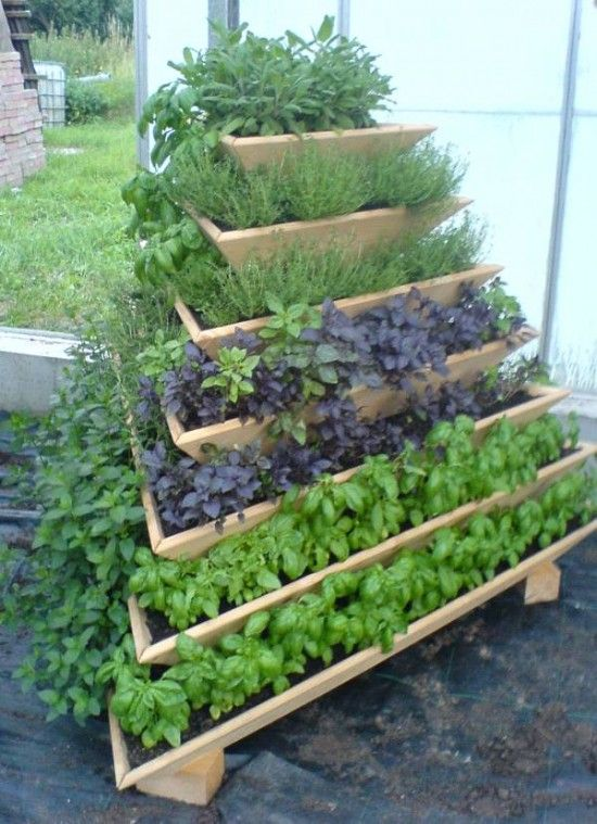 vertical pyramid planter is another cool idea to save a lot of space