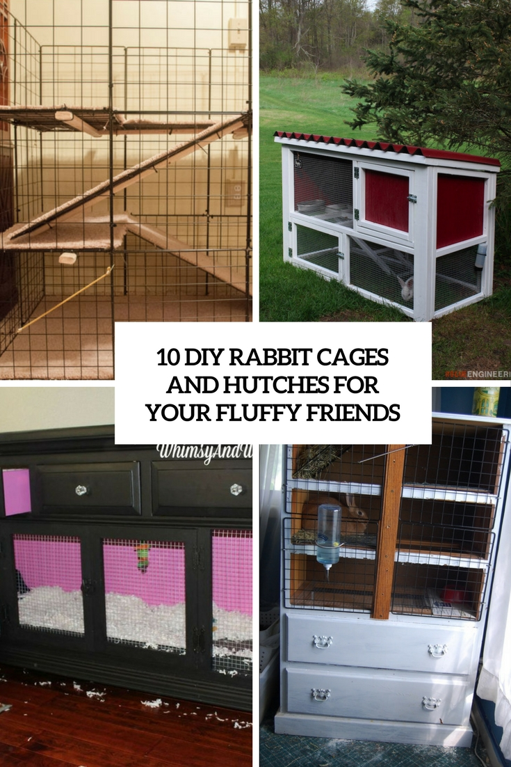 10 Diy Rabbit Cages And Hutches For Your Fluffy Friends Shelterness
