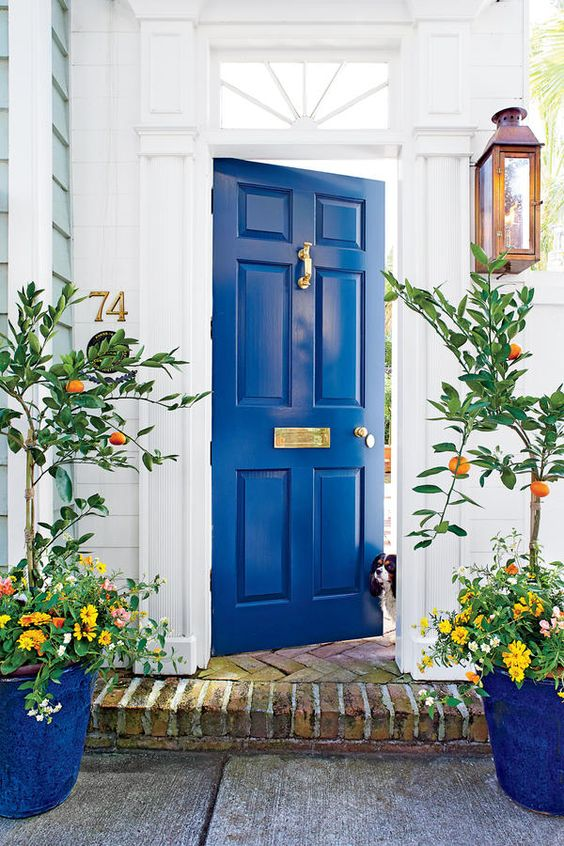 Mediterranean-inspired entrance with a bold blue door and planters with tangerin trees and bold florals