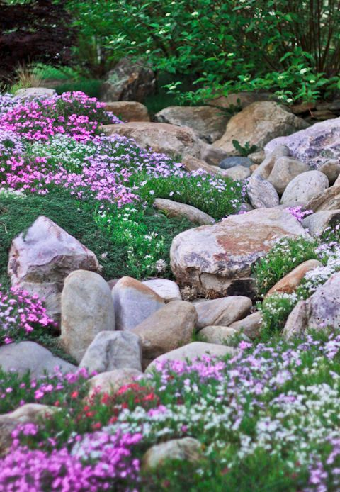 20 beautiful rock garden design ideas shelterness for Hillside rock garden designs