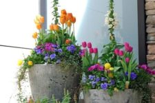 13 bold spring flowers in matching concrete pots