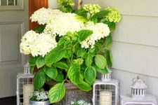 15 candle lanterns, planters with flowers and a large urn with lush greenery