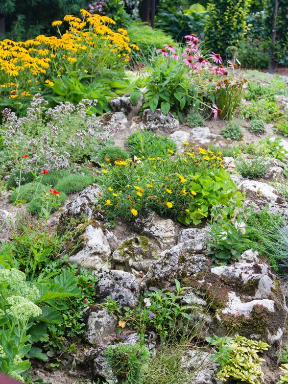 Alpine plants are perfect if you're pushed for space or want to create a stylish low key area