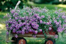 mobile garden bed