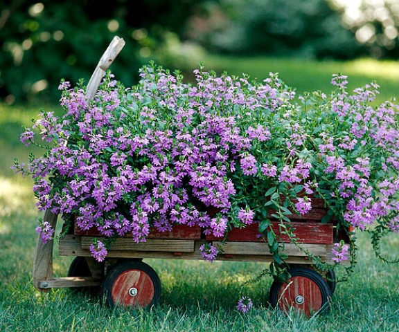 an old cart used as a mobile garden bed (you can