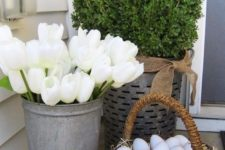 17 hint on Easter with a basket of eggs, white tulips and some boxwood planted