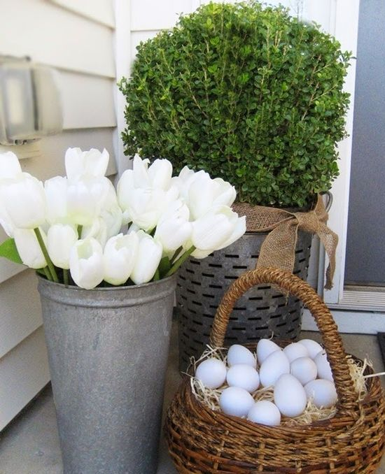 hint on Easter with a basket of eggs, white tulips and some boxwood planted