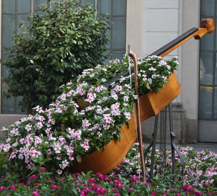 creative violin-shaped garden bed looks wow