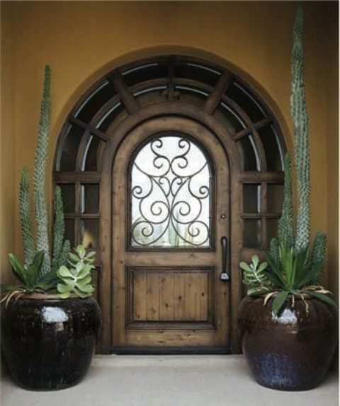 if you live in a tropical location, why not try cacti and succulents