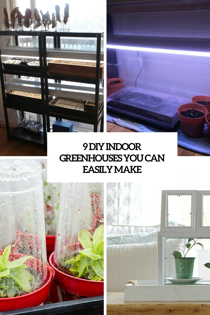 9 diy indoor greenhouses you can easily make - shelterness