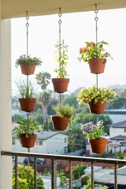 a blacony herb garden on vertical poles is a very comfortable solution