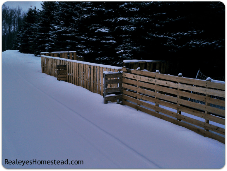 DIY pallet fence to prevent domestic animals from running away (via https:)