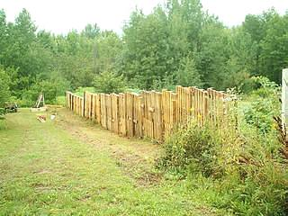 DIY pallet fence around the whole house